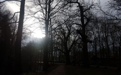 Wintergang 2018