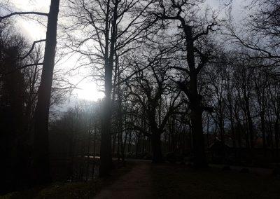 Wintergang 2018 Bild 22